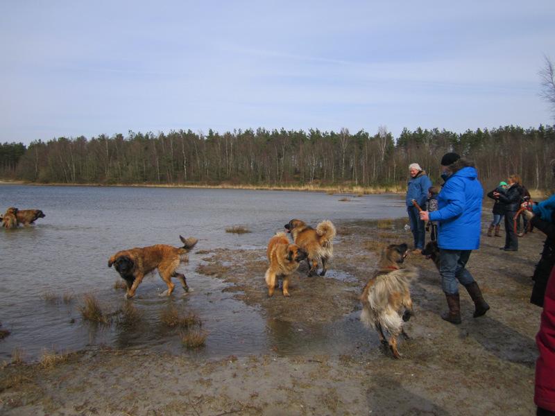 LHCN wandeling bij het Canadameer.